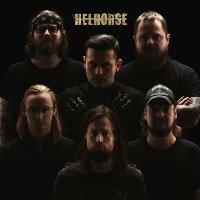 hellhorse 2016