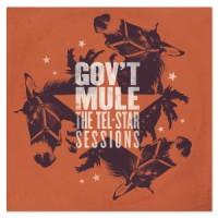 Gov't mule 2016