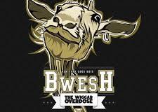 THE WIGGAR OVERDOSE: Bwesh