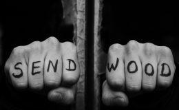 SENDWOOD – First leaf