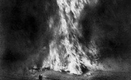 OVTENOIR: Fields of fire
